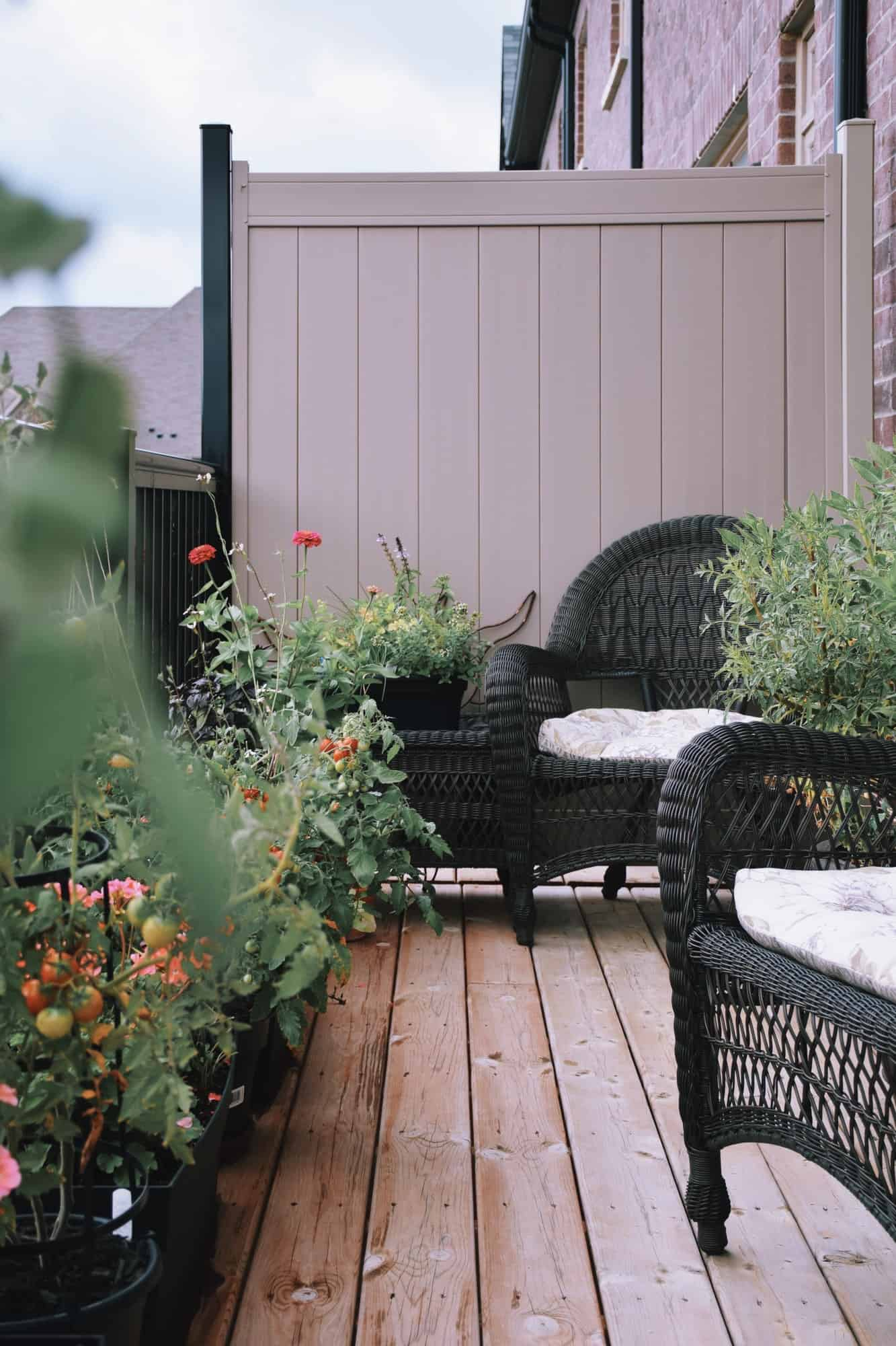 Balcony with outdoor furniture, tomato plants and flowers