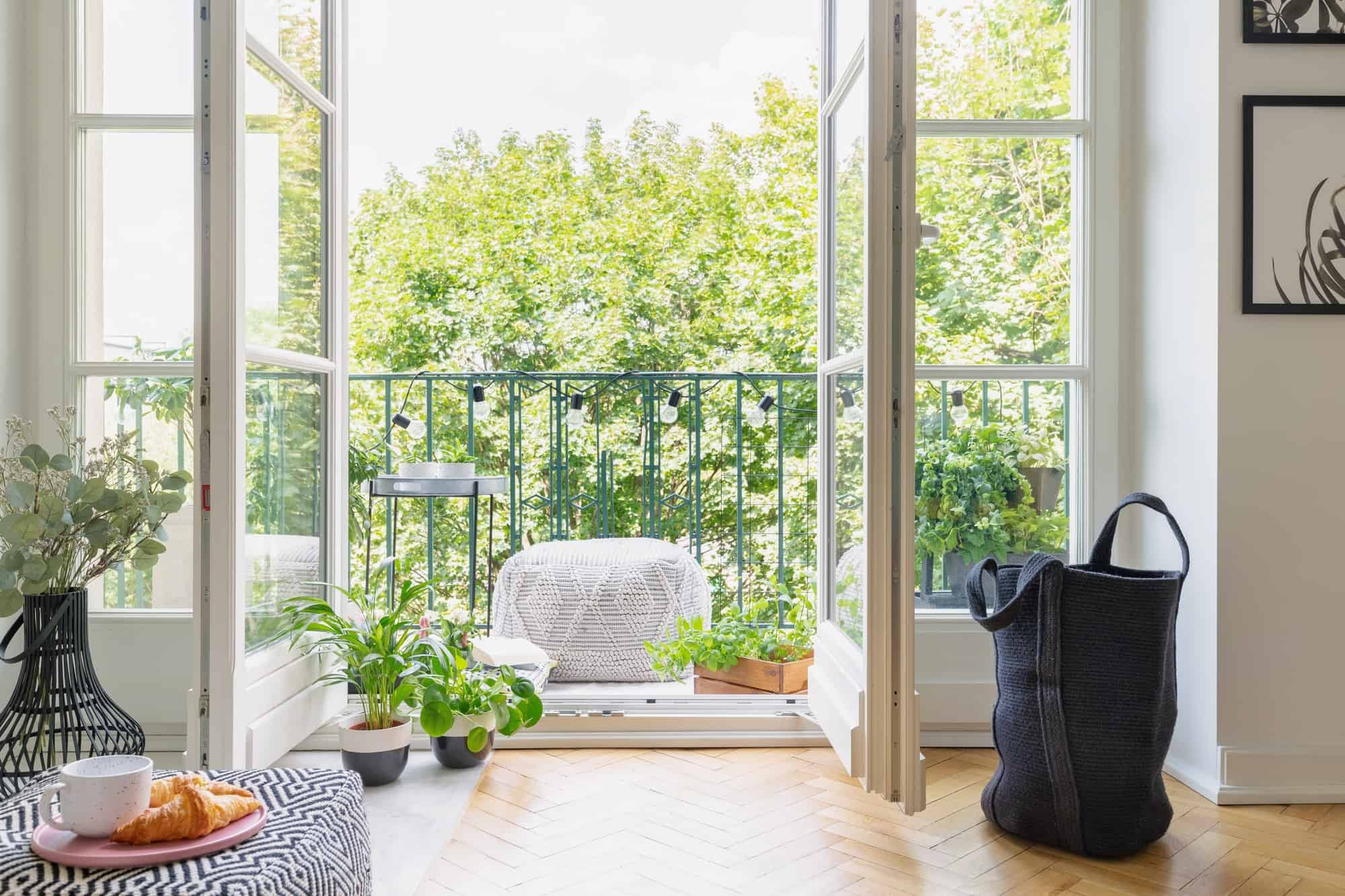 Green plants in pots in open door to balcony with small stylish