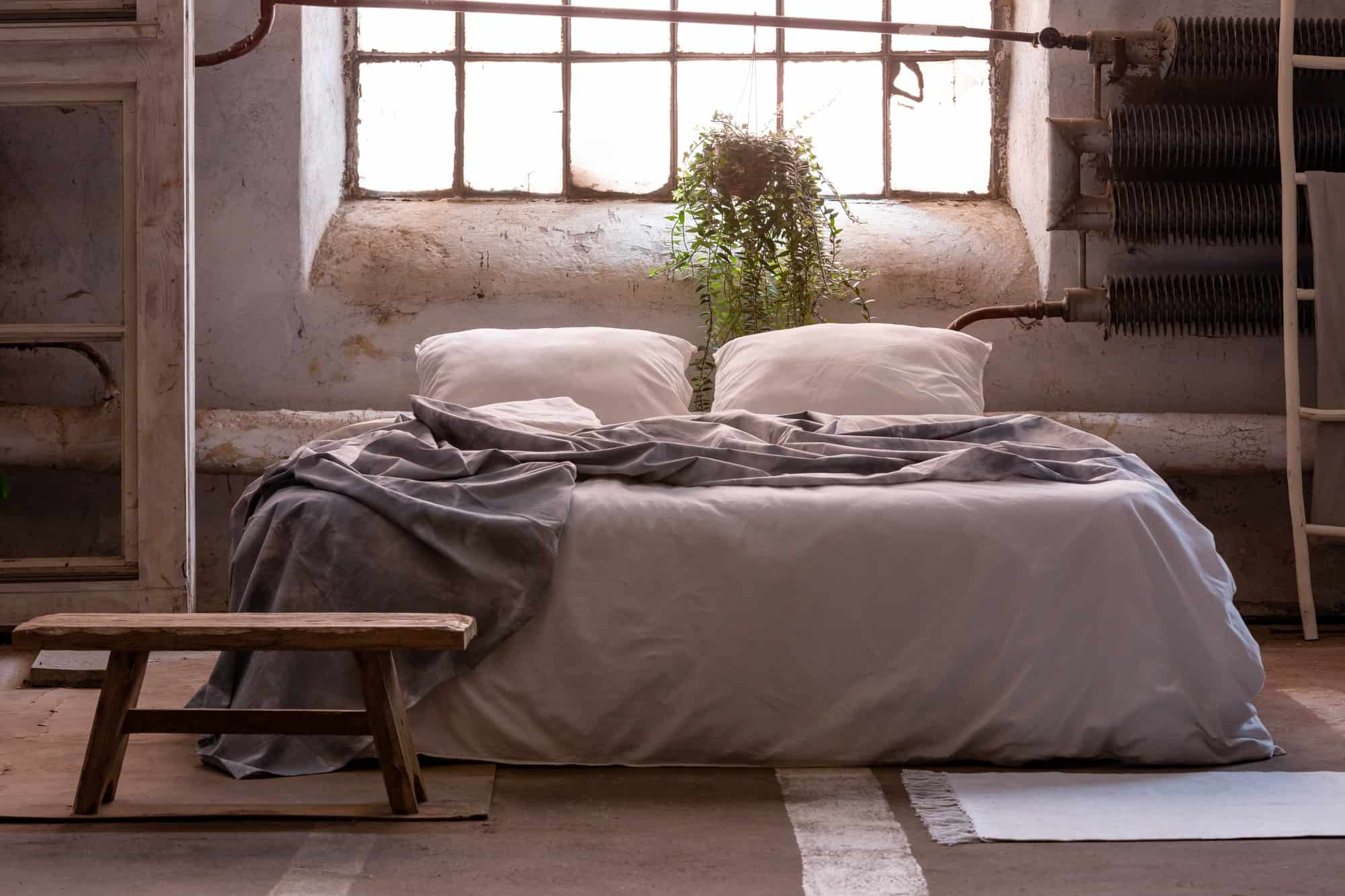 Real photo of a wabi sabi bedroom interior with a bed, plant and