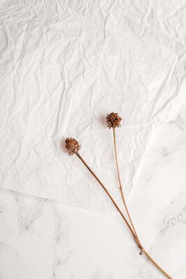 what to do with dry flowers