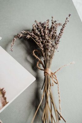 how to dry flowers in silica gel