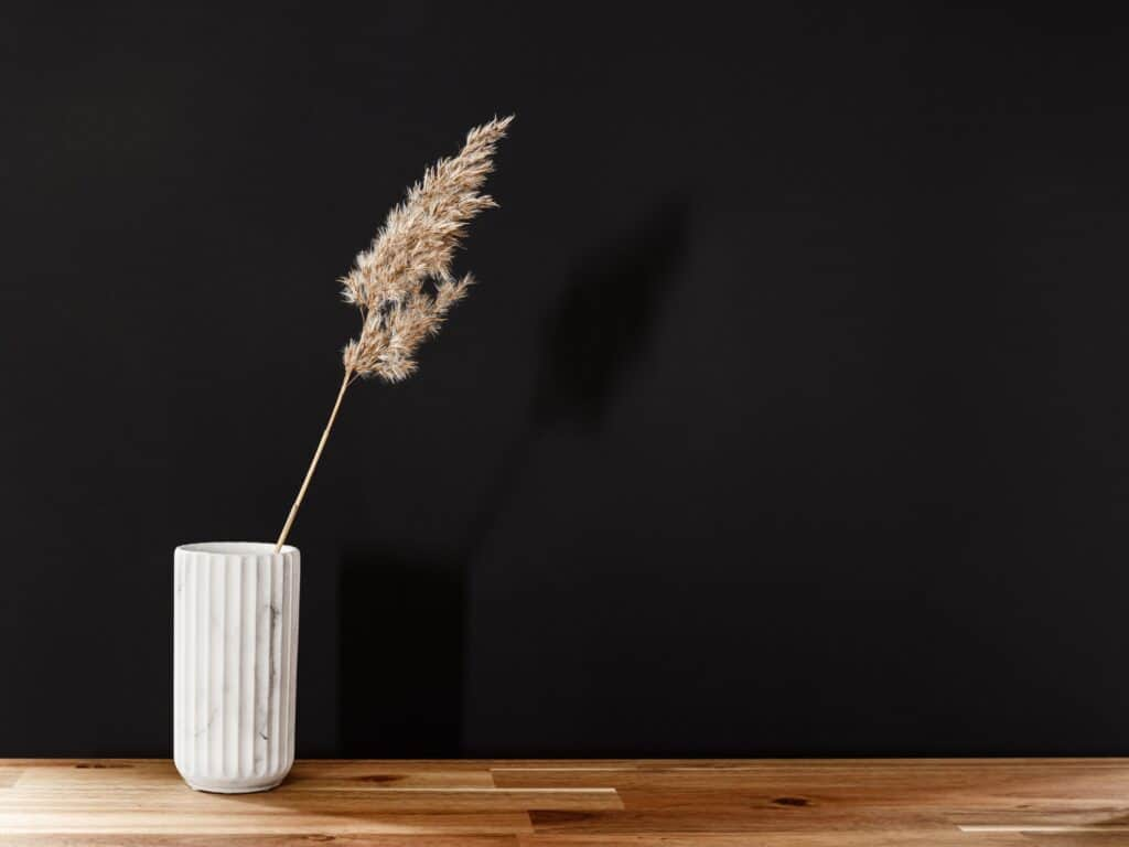 Reed in a white marble vase on a wooden table against black wall.